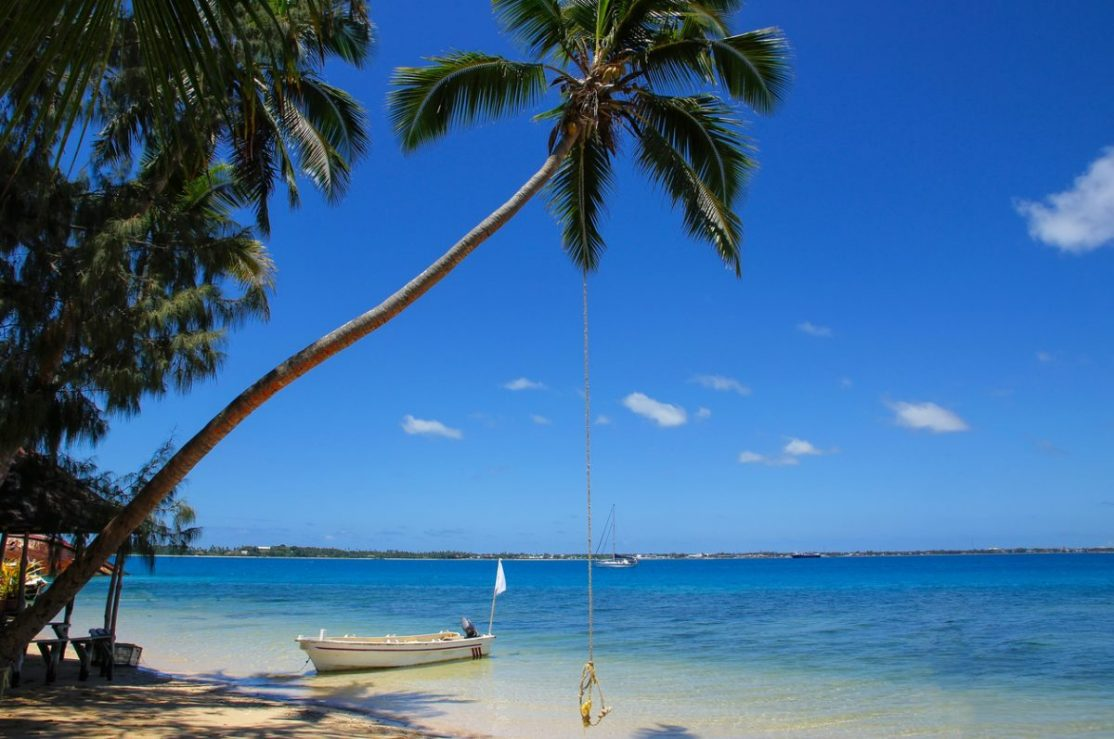 Boat and leaning palm tree with rope swing at island in Tonga.